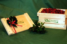 Crate of Fresh Cranberries